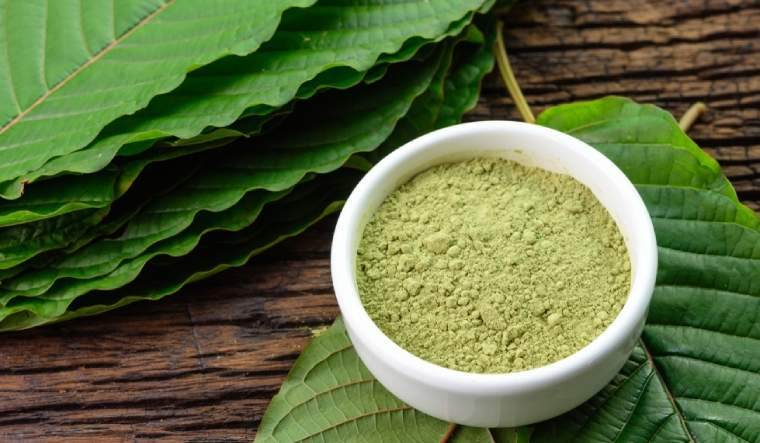 Seven Easy Measures To A Successful Kratom Extract Strategy